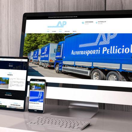 AP Autotrasporti Pellicioli | 23Studio | Creative agency | Bergamo